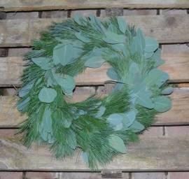 Kranz Eucalyptus mit Kiefer  30 cm  - Bild vergrößern